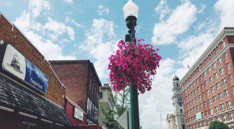 Saving Downtown's Flowers